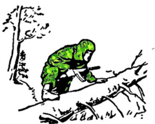 """Коллаж иллюстрации из """"Учебника сержанта Сухопутных Войск"""""""
